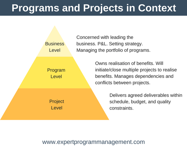 the differences between programme and portfolio management management essay It portfolio management is the application of systematic management to the investments, projects and activities of enterprise information technology (it) departments examples of it portfolios would be planned initiatives, projects, and ongoing it services (such as application support.