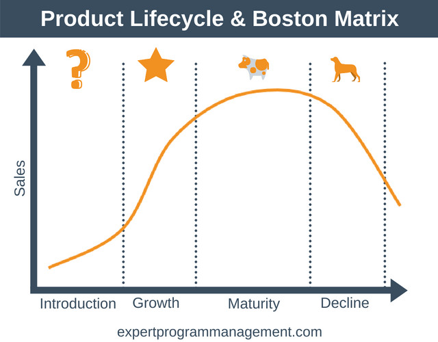 Product Lifecycle & Boston Matrix