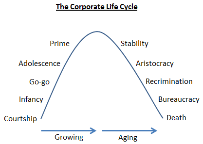 The Corporate Life Cycle