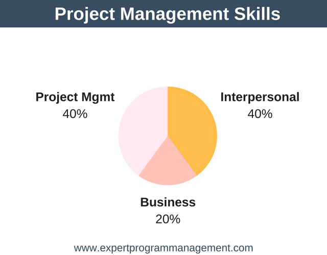 Project Management Skillset