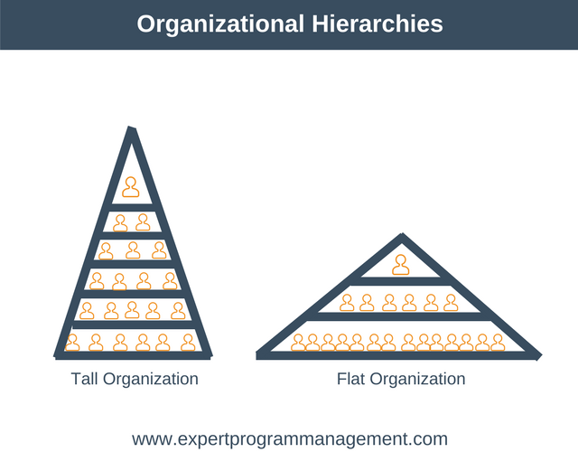 Organizational Hierarchies