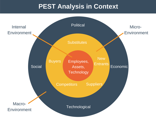 PEST Analysis in Context