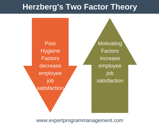 two factor theory Frederick herzberg's two factor theory is one the best-known theories of people management motivated (a word you'll read a lot in this article) by his interest in mental health, the american psychologist carried out an influential study into employees' attitudes to their jobs.
